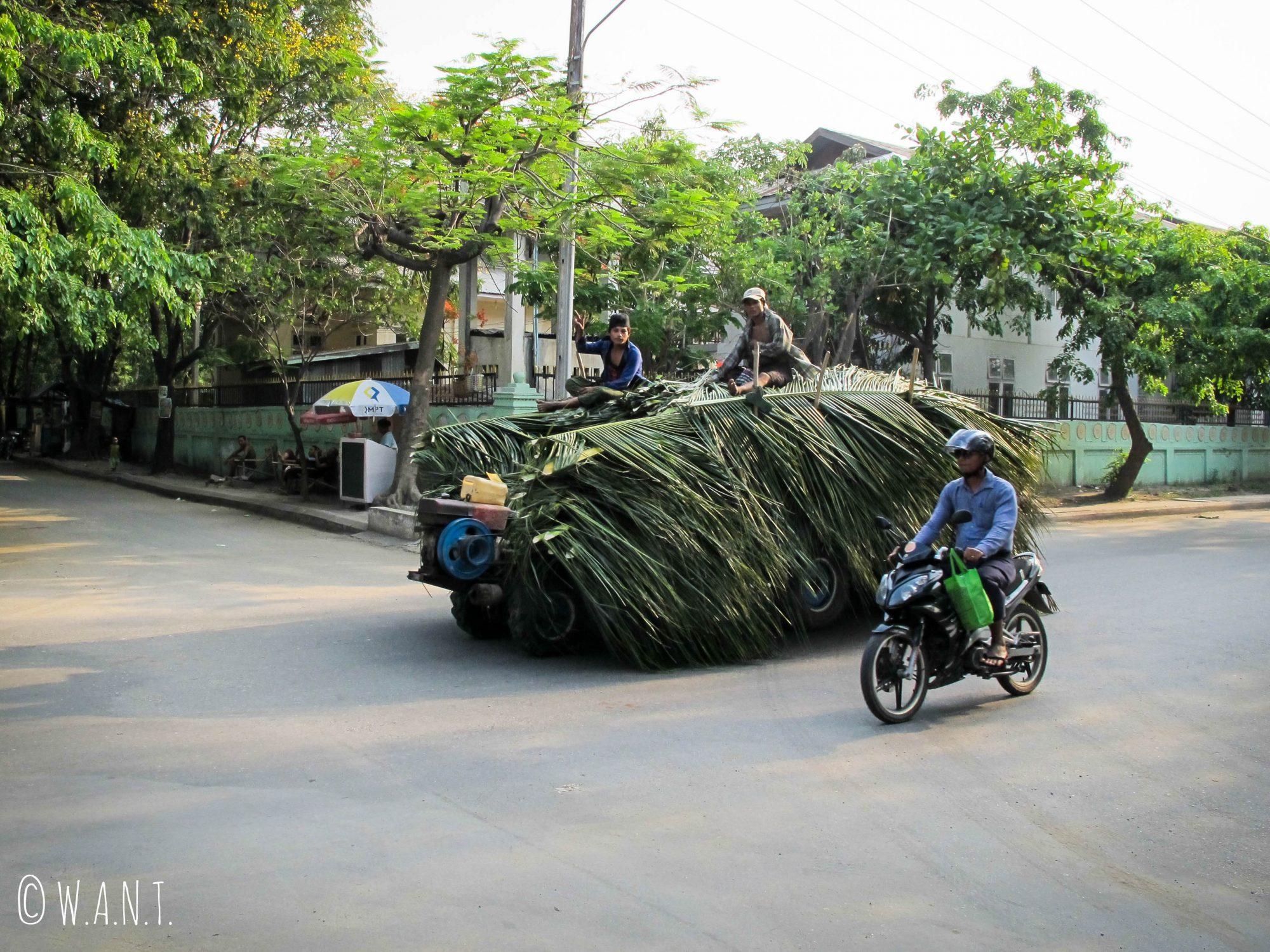 Chargement de feuilles de palme dans les rues de Mandalay