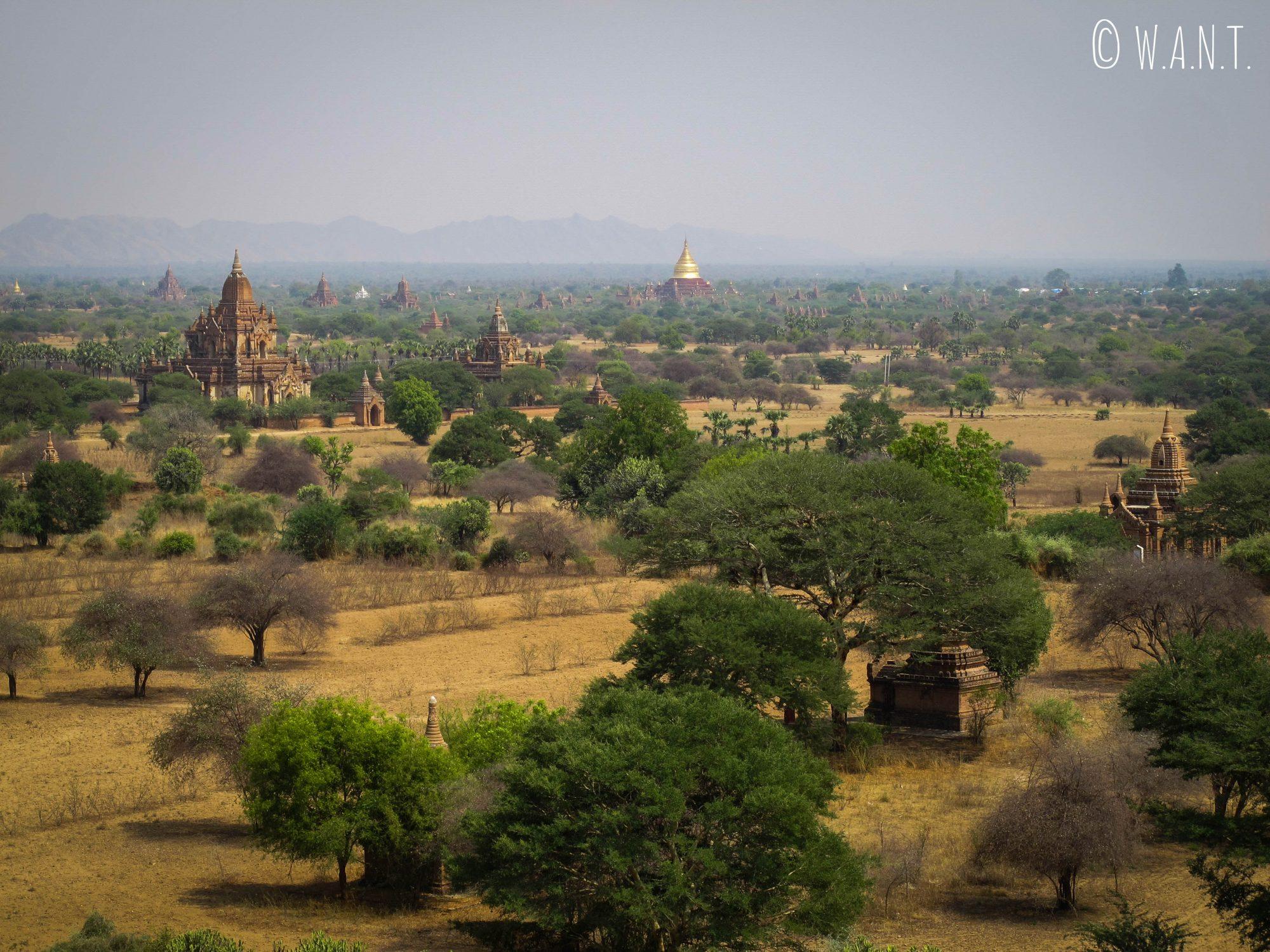 Des pagodes à perte de vue depuis la pagode Shwesandaw