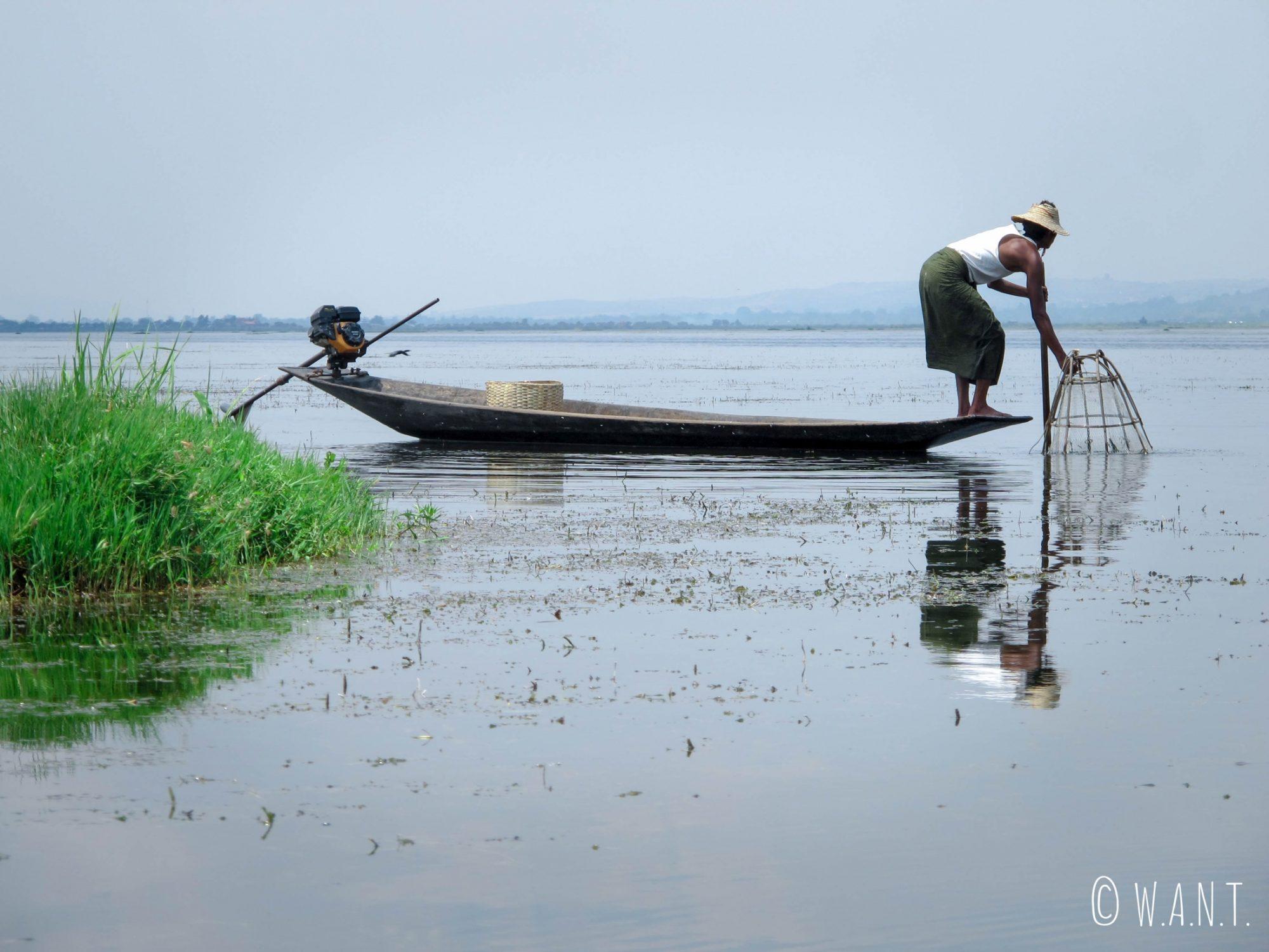 La nasse conique est indispensable au pêcheur Intha, qui la dépose depuis l'extrémité de sa barque