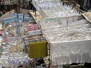 Le linge est étendu à perte de vue dans la laverie géante de Mumbai
