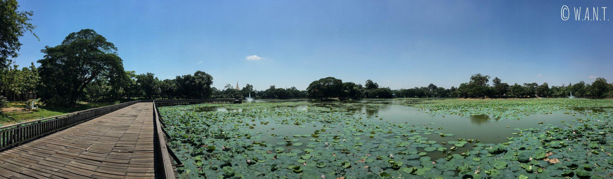 Le parc Bogyoke, un écrin de verdure au coeur de Yangon