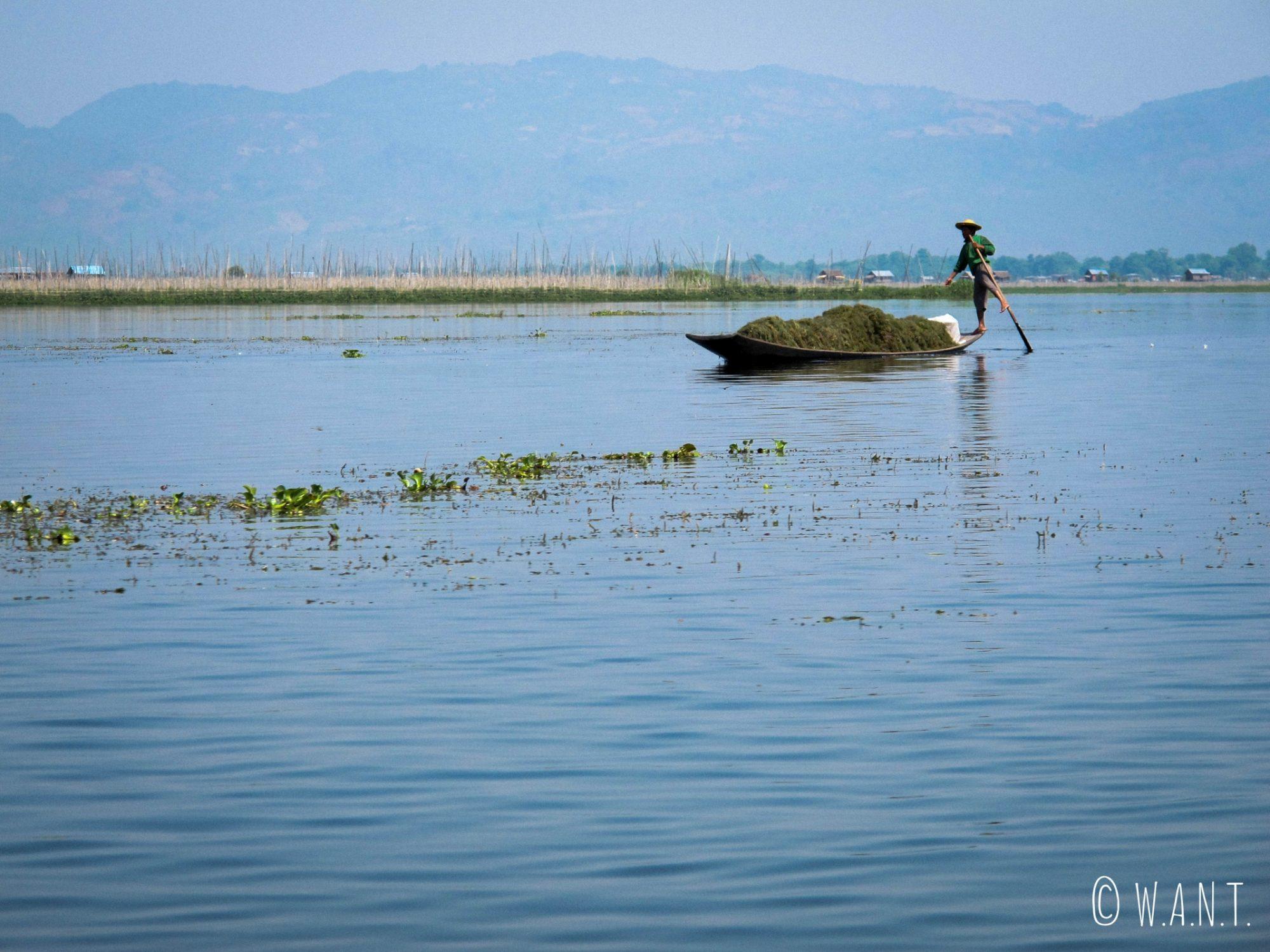 Les Inthas ramènent de la terre pour fabriquer les jardins flottants