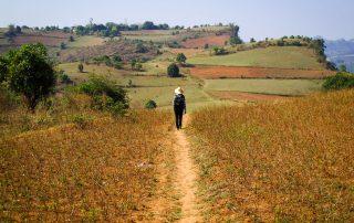 Notre guide Nambo prend les devant sur ces chemins arides