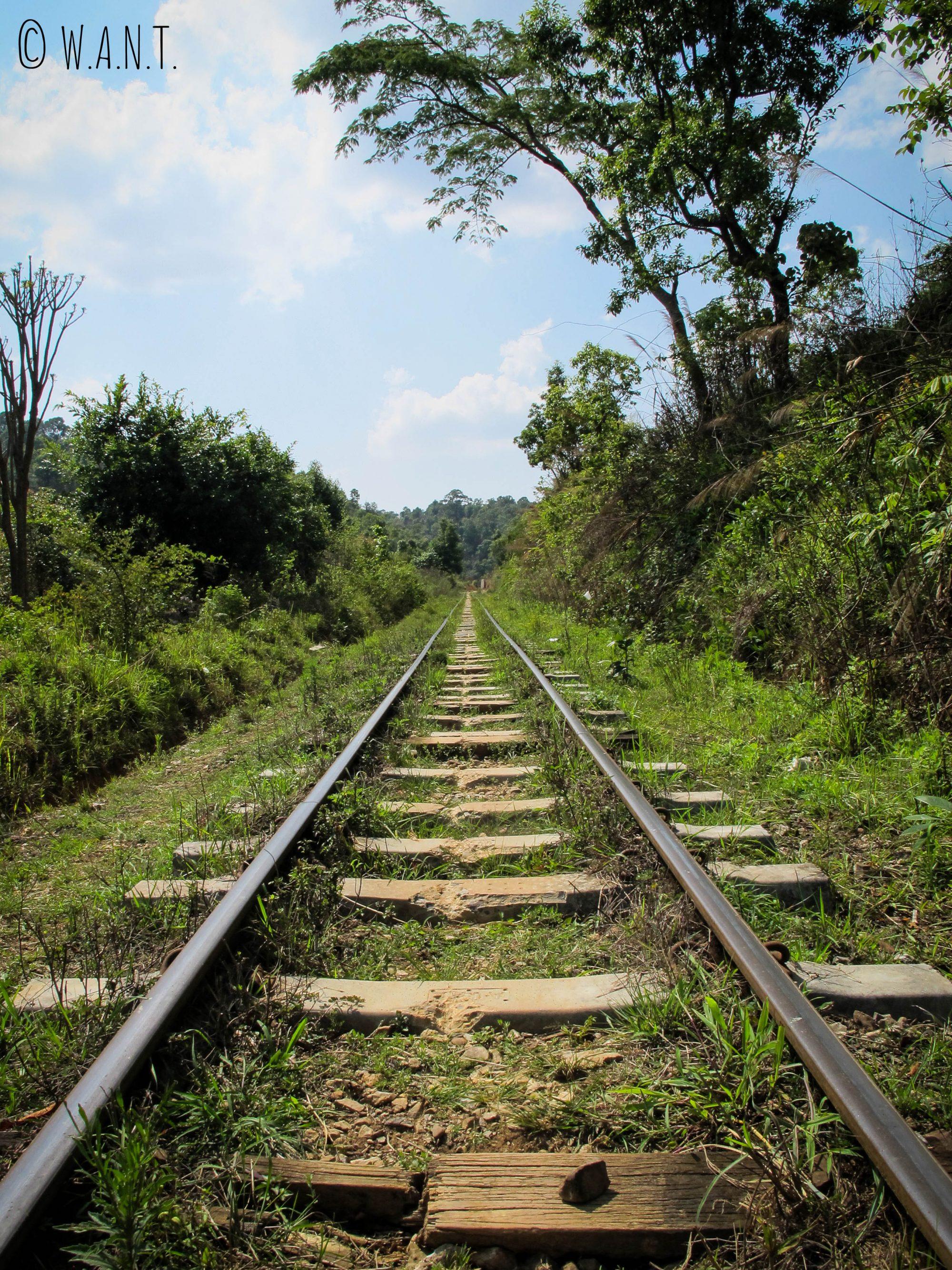 Perspective sur le chemin de fer