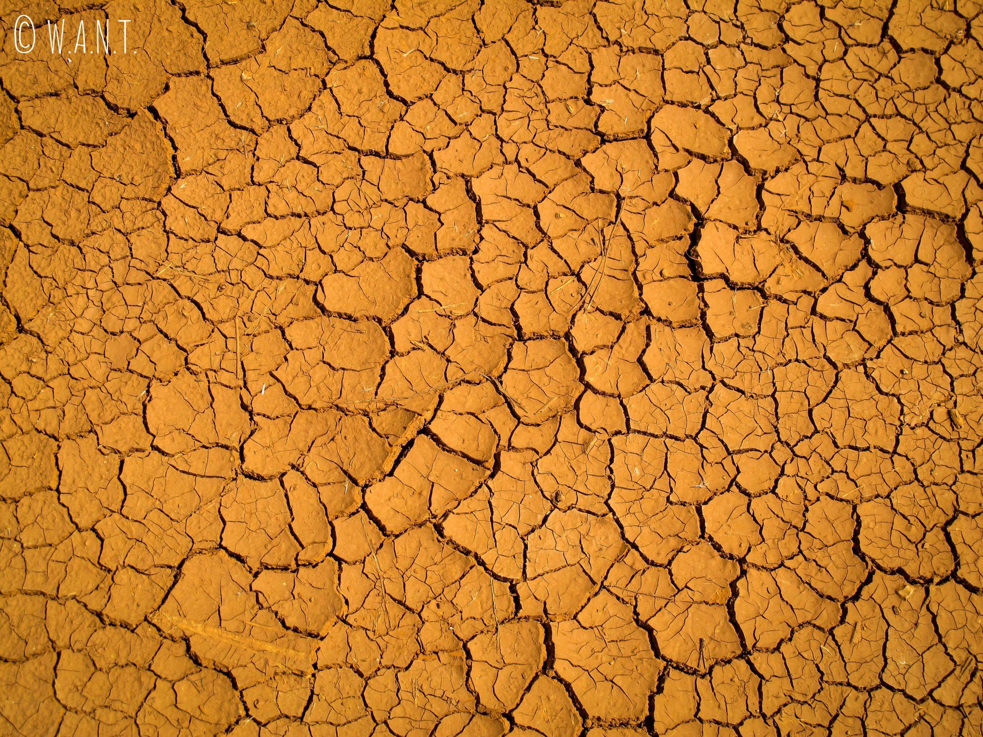 Sol craquelé dû à la sécheresse