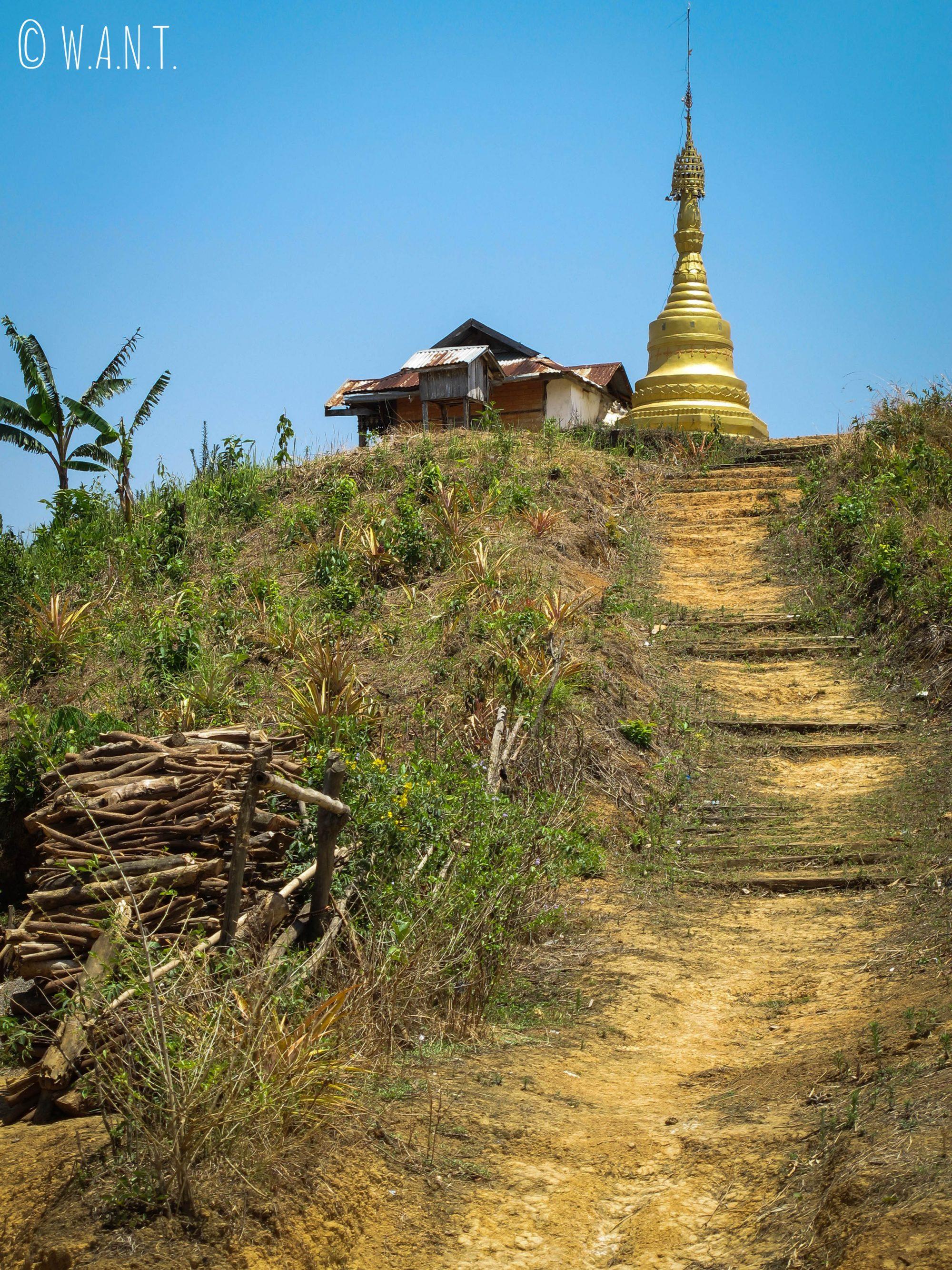 Stupa au milieu de la campagne birmane