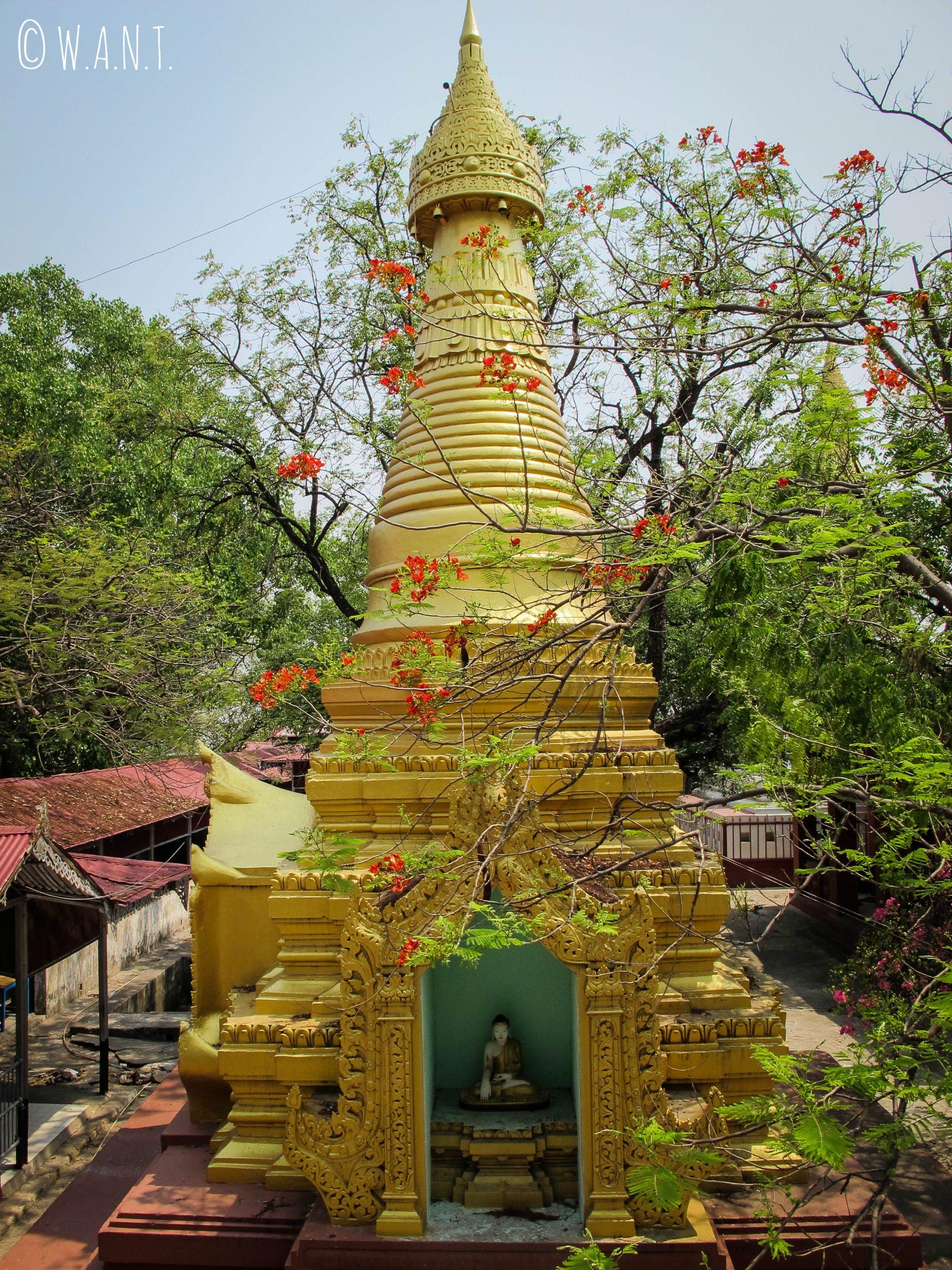 Un coin de paradis sur Mandalay Hill