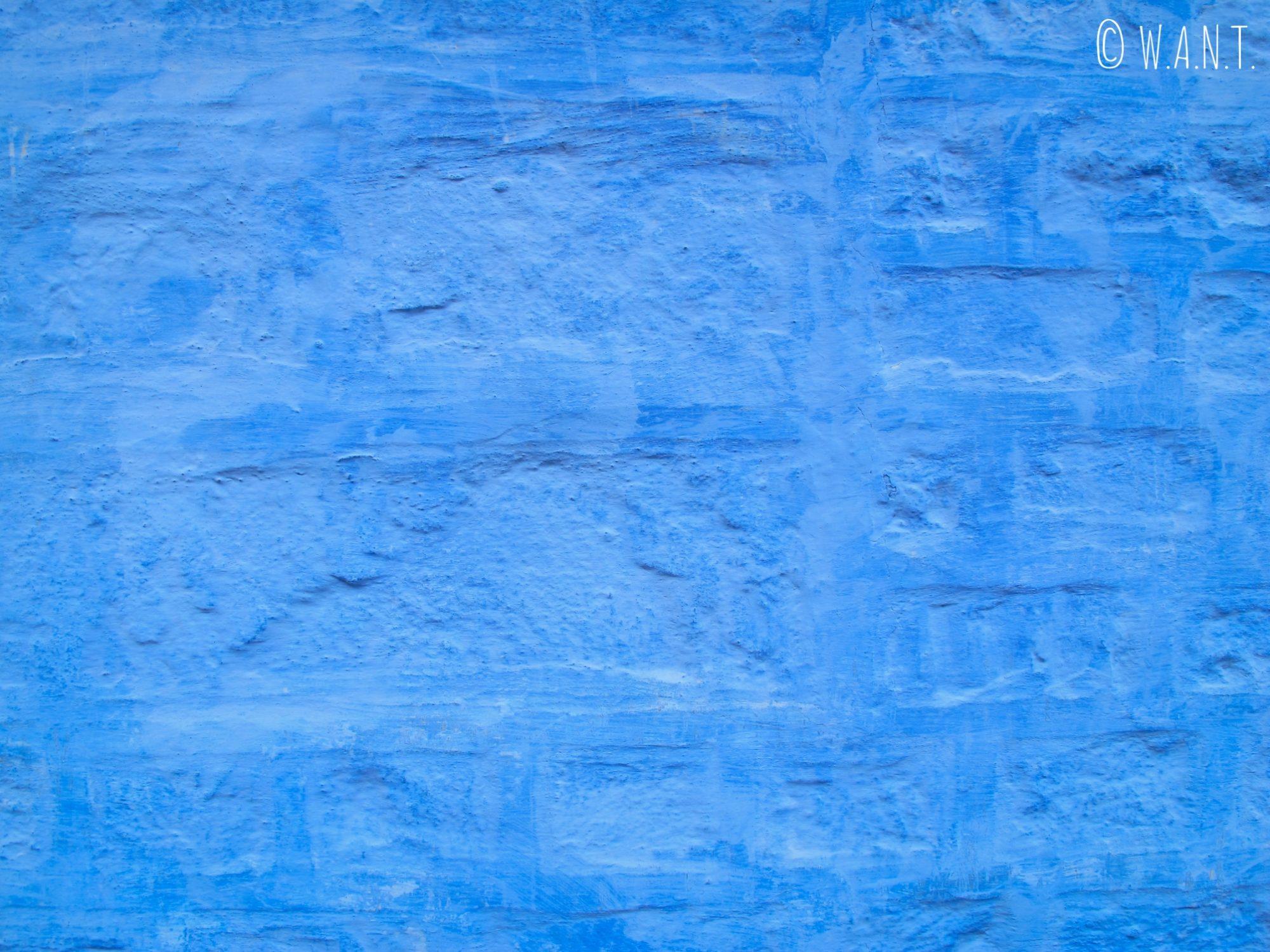Façade bleue des maisons de Jodhpur, appelée aussi la cité bleue