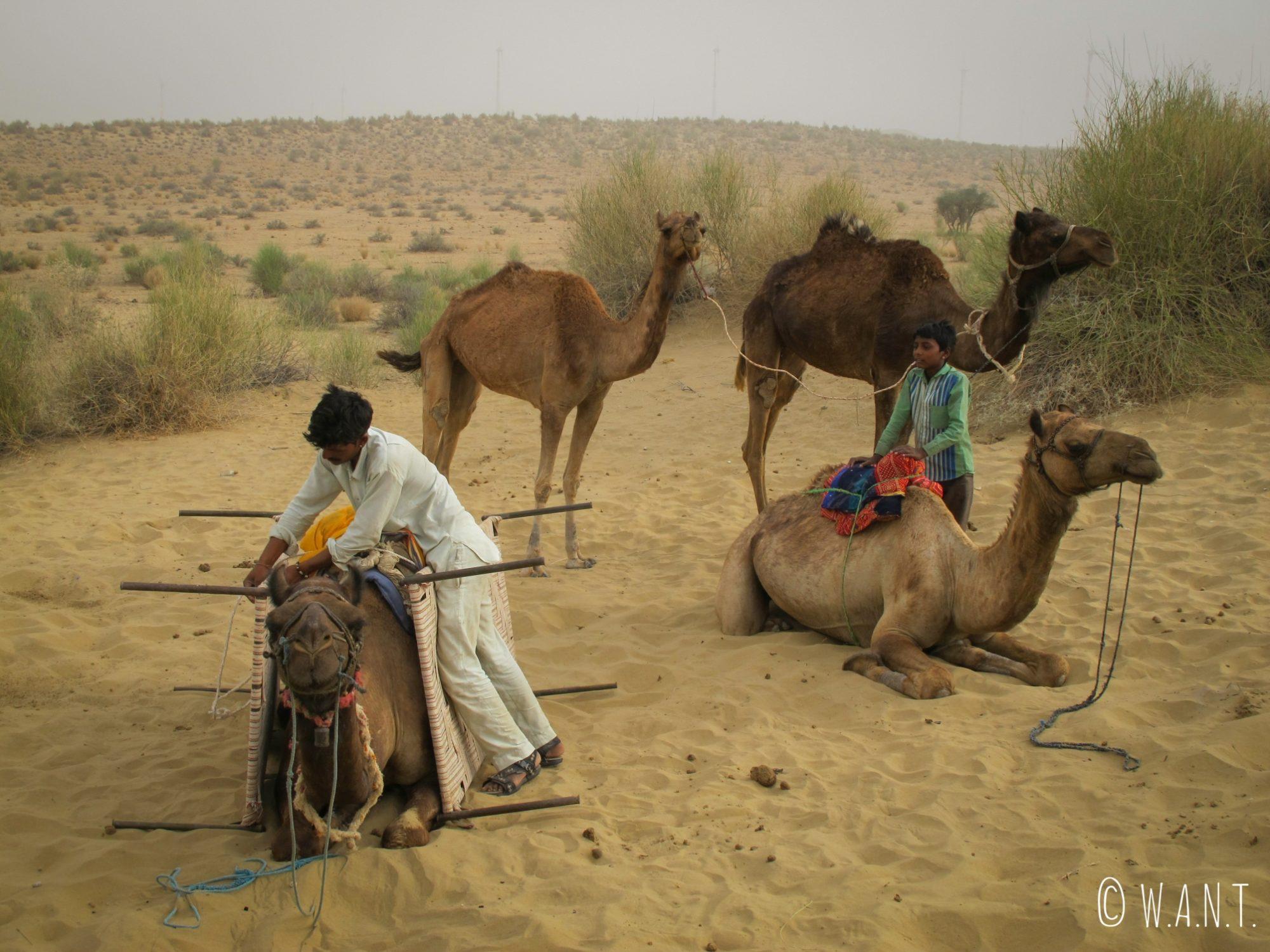 Harkha prépare la caravane en chargeant l'intégralité de l'équipement sur les dromadaires