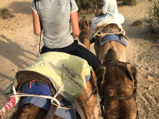 La caravane prend le chemin du désert, et c'est très bon pour le fessier et les adducteurs !