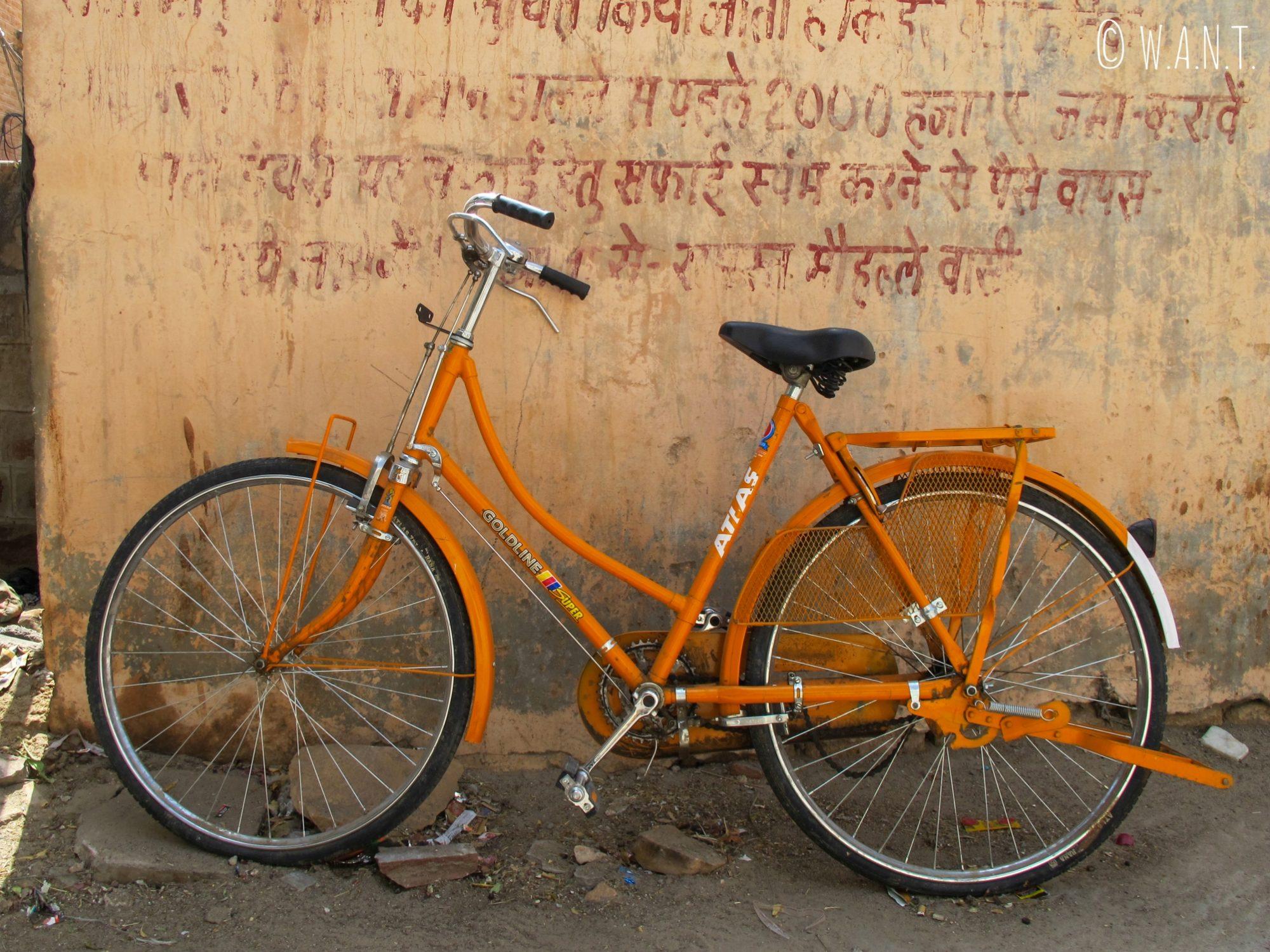 Le vélo est un moyen de transport très apprécié dans les rues de Jodhpur, malgré la chaleur !