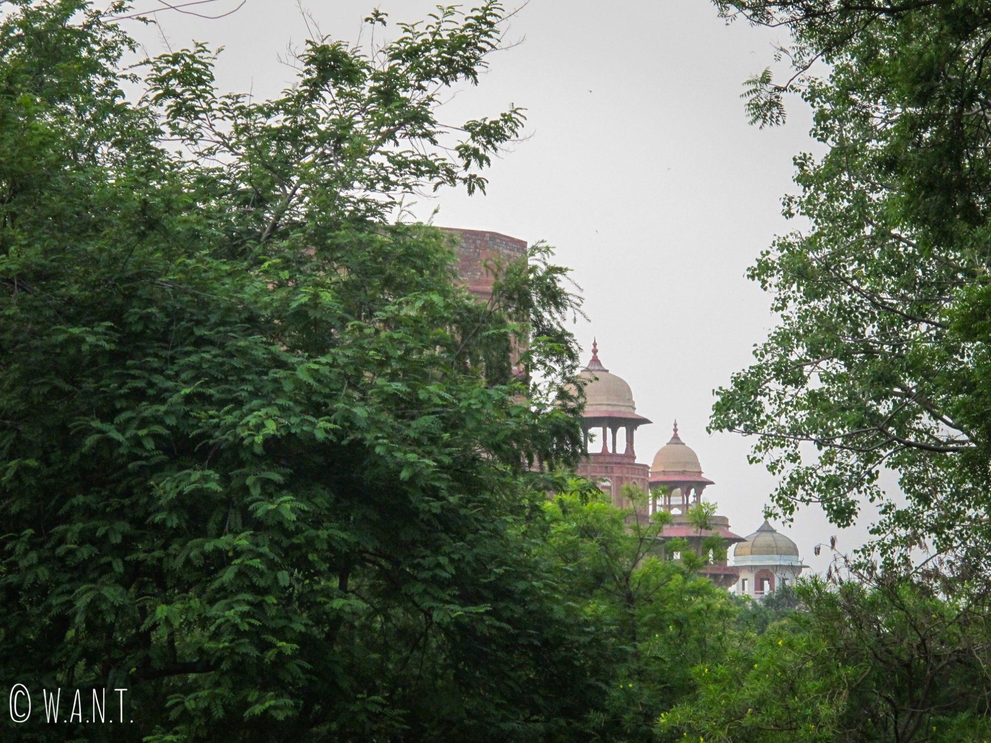 Les environs du Fort d'Agra sont très boisés, nous aperçevons seulement le haut de sa muraille