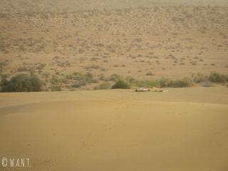 Nos couchages au milieu des dunes du désert du Thar