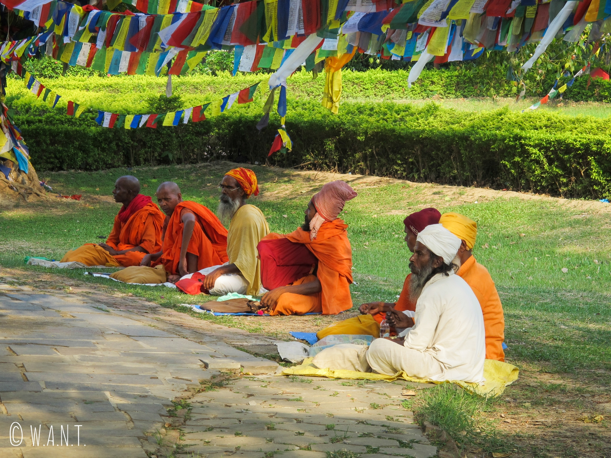 Autour du Bodhi Tree du temple Maya Devi, l'atmosphère est propice au recueillement