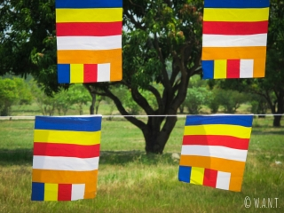 Les drapeaux bouddhiques flottent dans les jardins de Lumbini