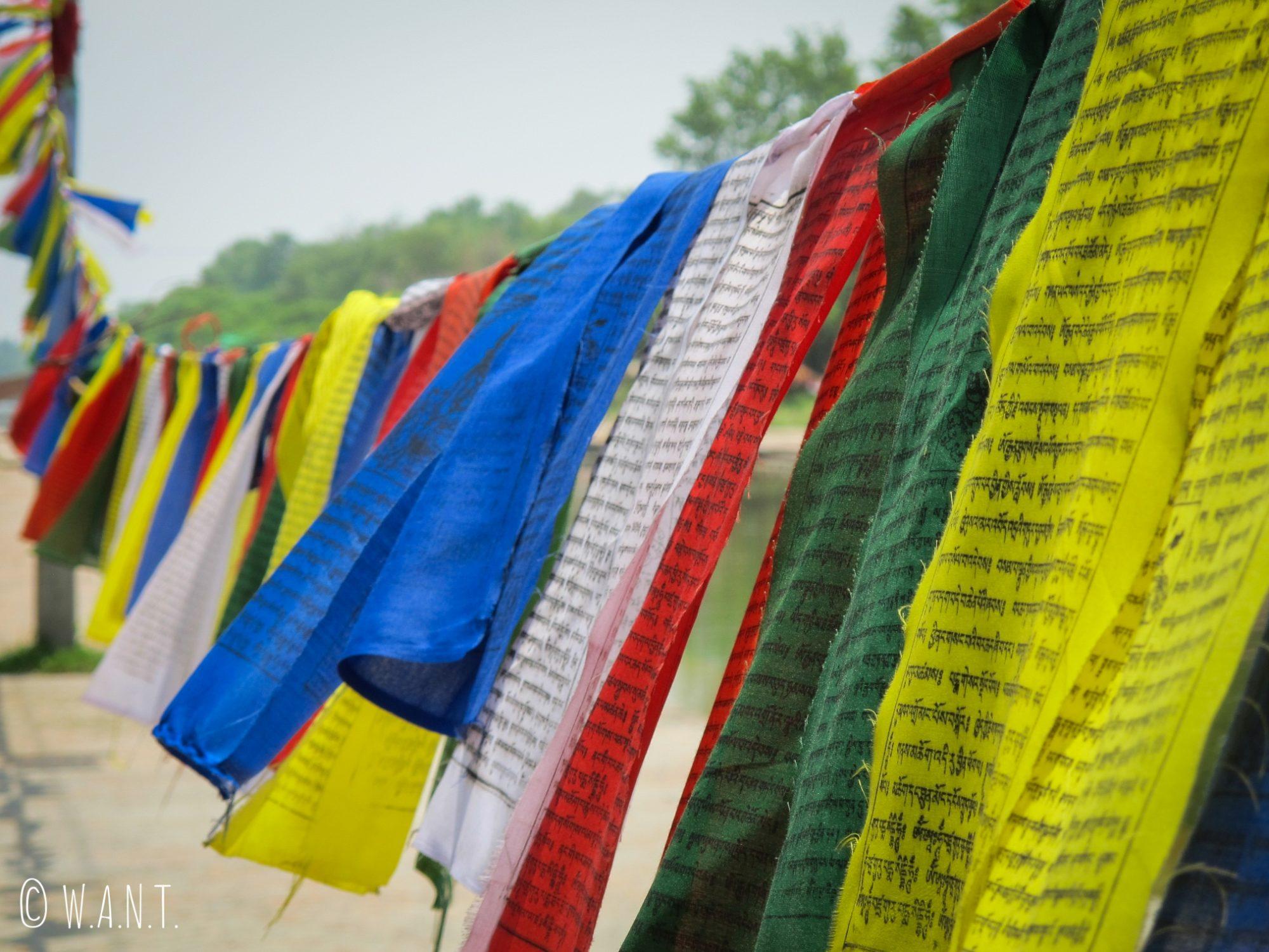 Les drapeaux de prières flottent au vent autour du canal des jardins de Lumbini