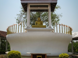 Statue de Bouddha au monastère du Sri Lanka de Lumbini