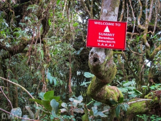 Arrivés au sommet du Berembun dans les Cameron Highlands, nous trouvons seulement cette pancarte