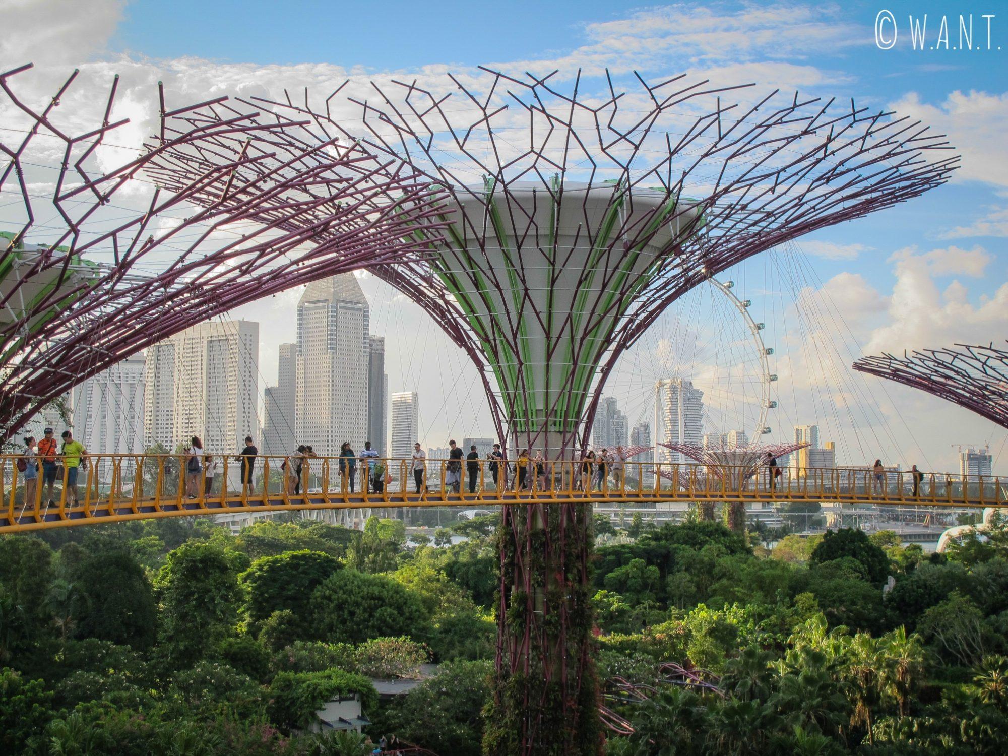 Le OCBC Skyway permet d'avoir une vue à 22 mètres au-dessus du sol