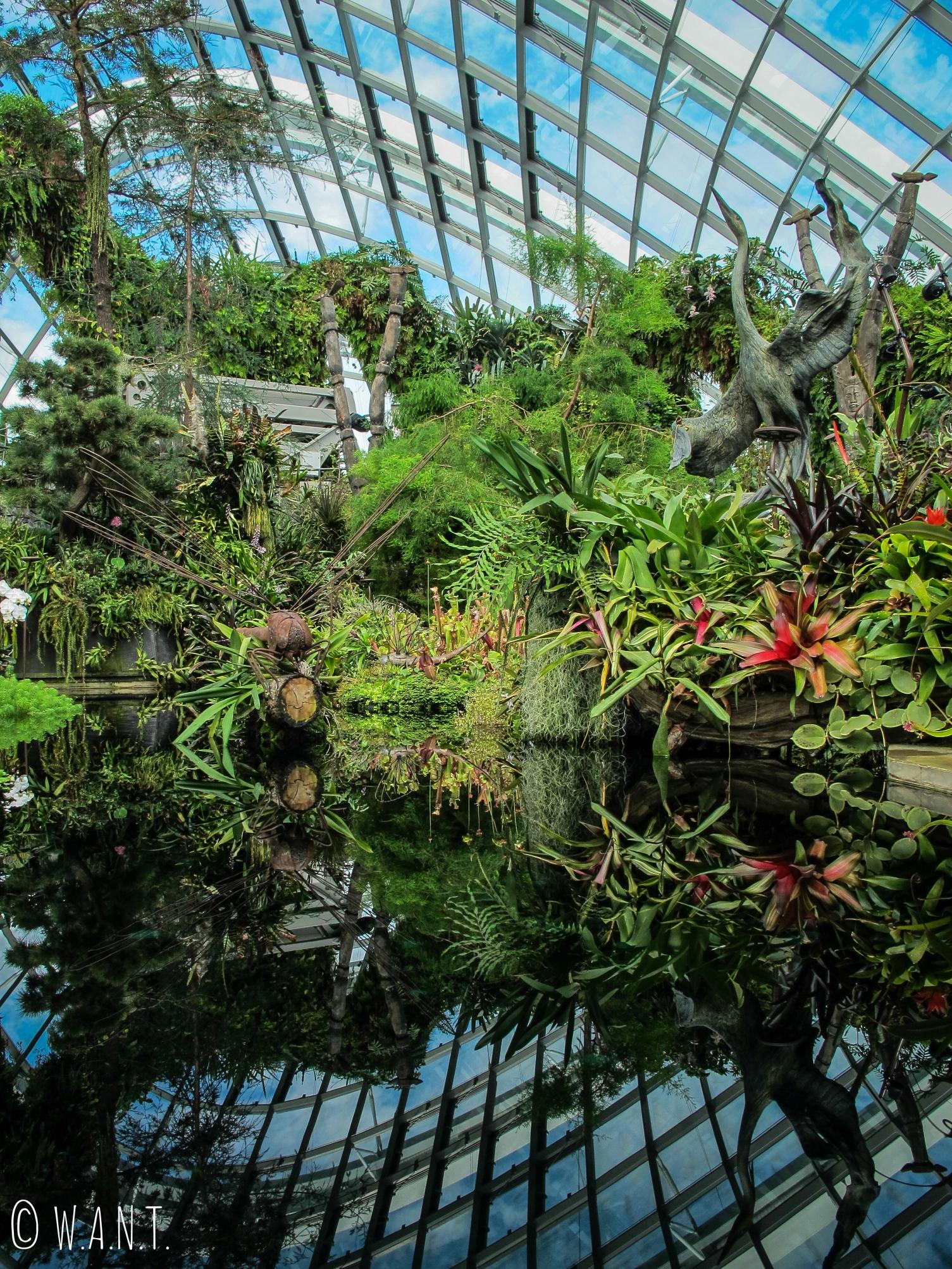 L'espace Lost World est situé tout en haut de la montagne végétale de Cloud Forest