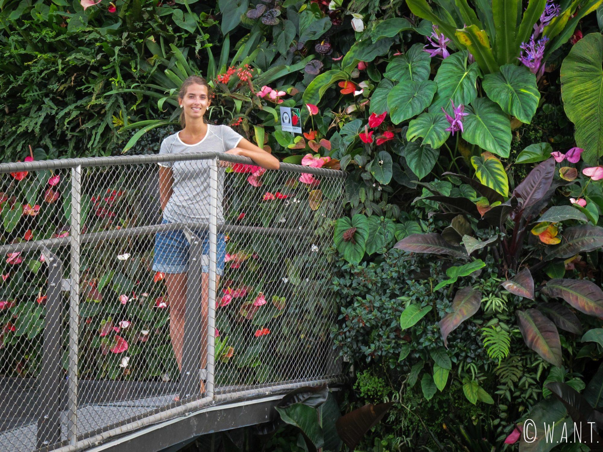Marion devant le mur végétal à l'intérieur de Cloud Forest
