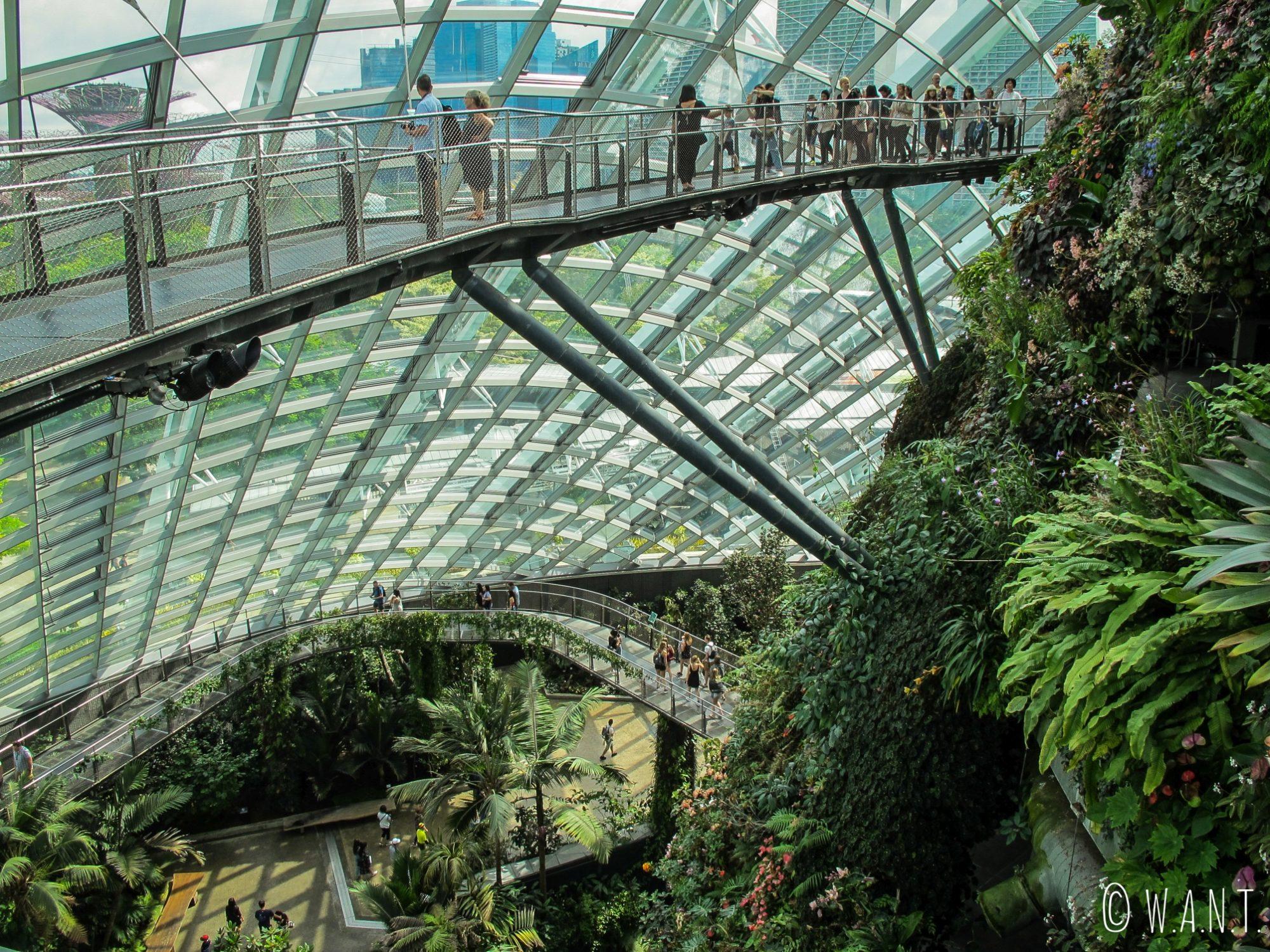Pont permettant de tourner autour de la montagne végétale à l'intérieur de Cloud Forest