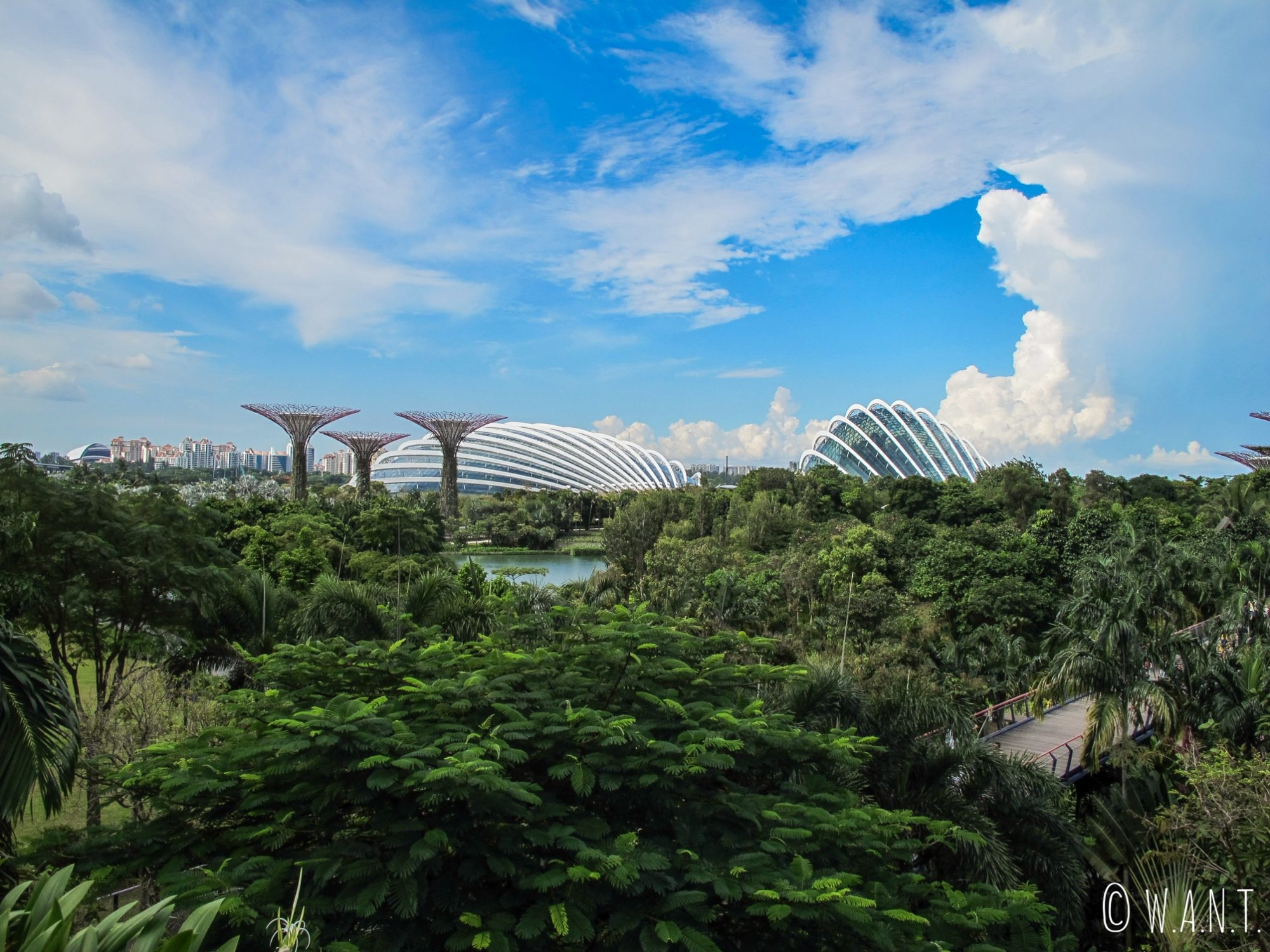 Vue sur les deux dômes de Gardens by the bay, Cloud Forest et Flower Dome