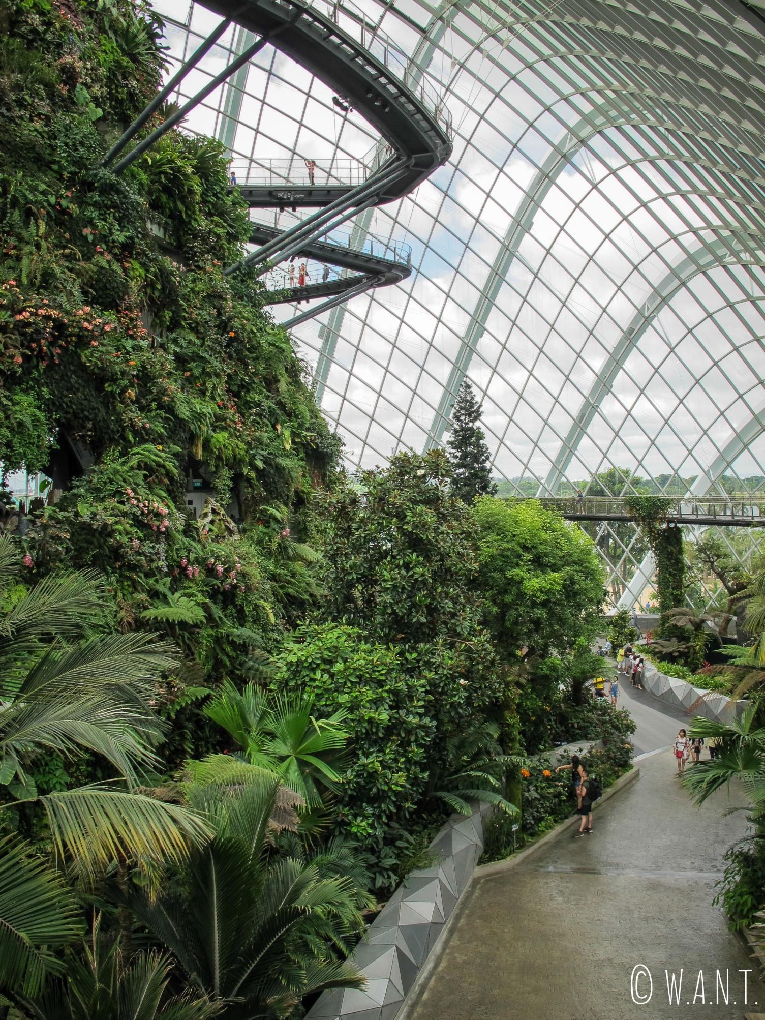 Vue sur l'intérieur de Cloud Forest à Singapour