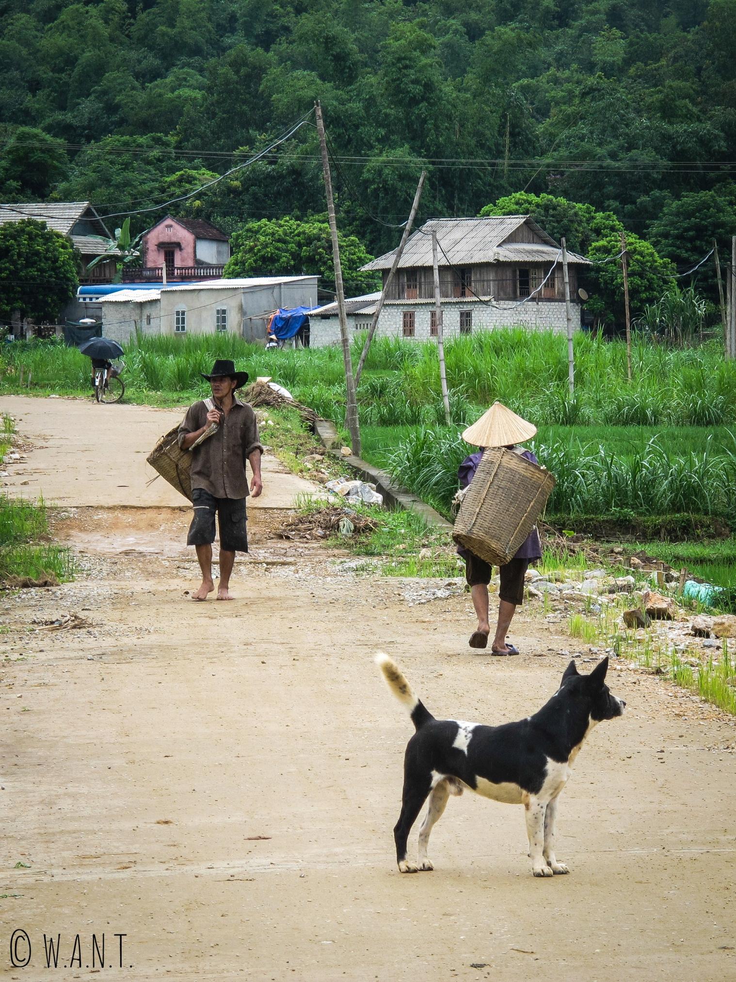 Agriculteurs partant au travail à Mai Chau