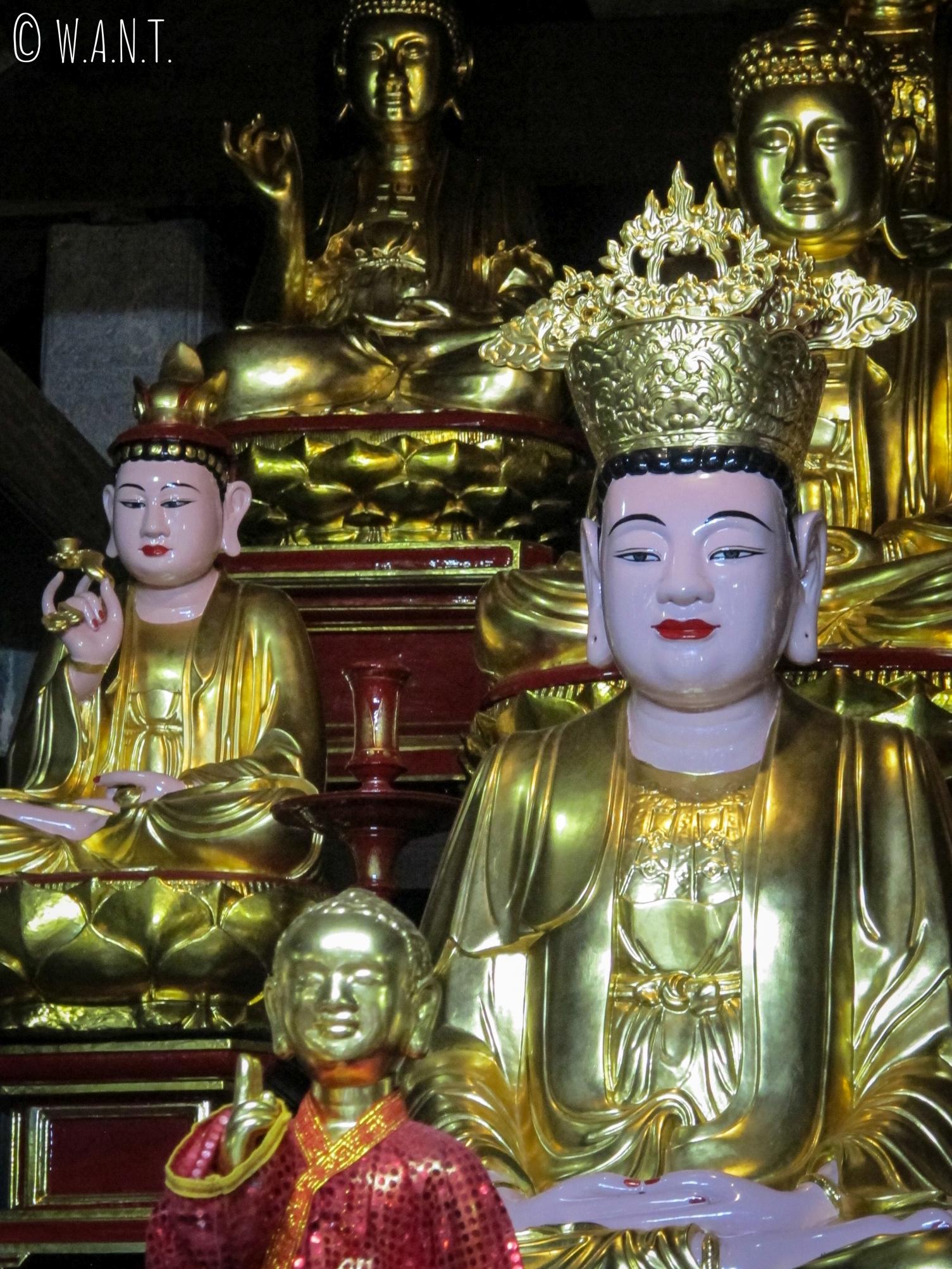 Bouddhas à l'intérieur de la pagode Bich Dong de Tam Coc