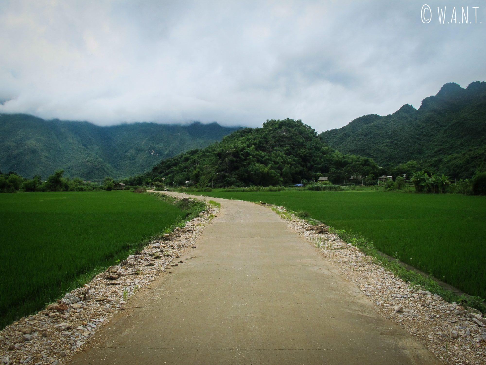 Chemin à travers les rizières de Mai Chau