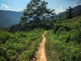 Chemin de terre faisant office de route pour rejoindre le village de Nam Ban