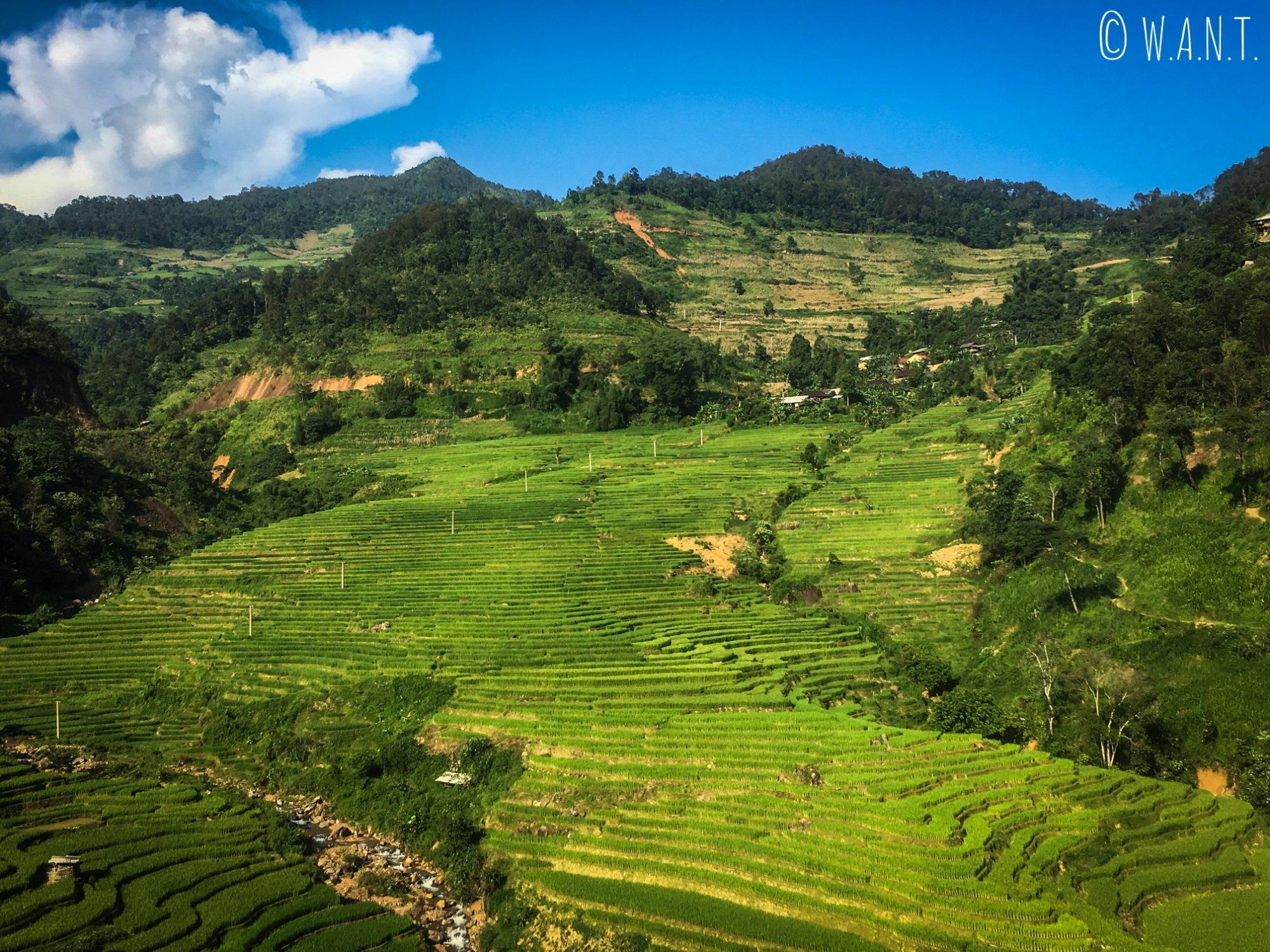 Culture en terrasses à perte de vue sur la route entre Nam Ban et la QL 4C