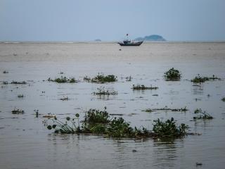 Démarcation entre la rivière et la mer de Chine méridionale dans la région d'Hoi An