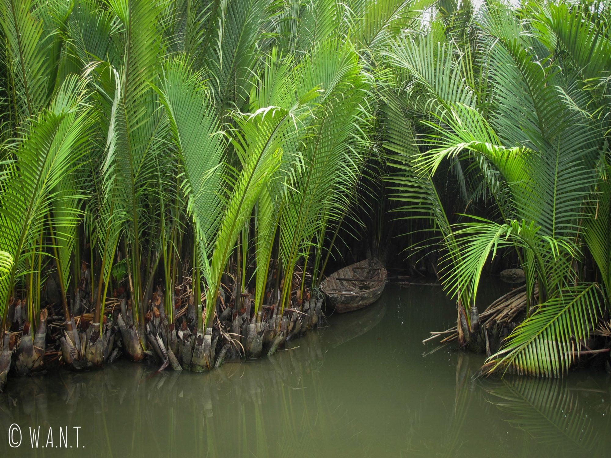 Il est possible de naviguer à l'intérieur des water coconut à Hoi An
