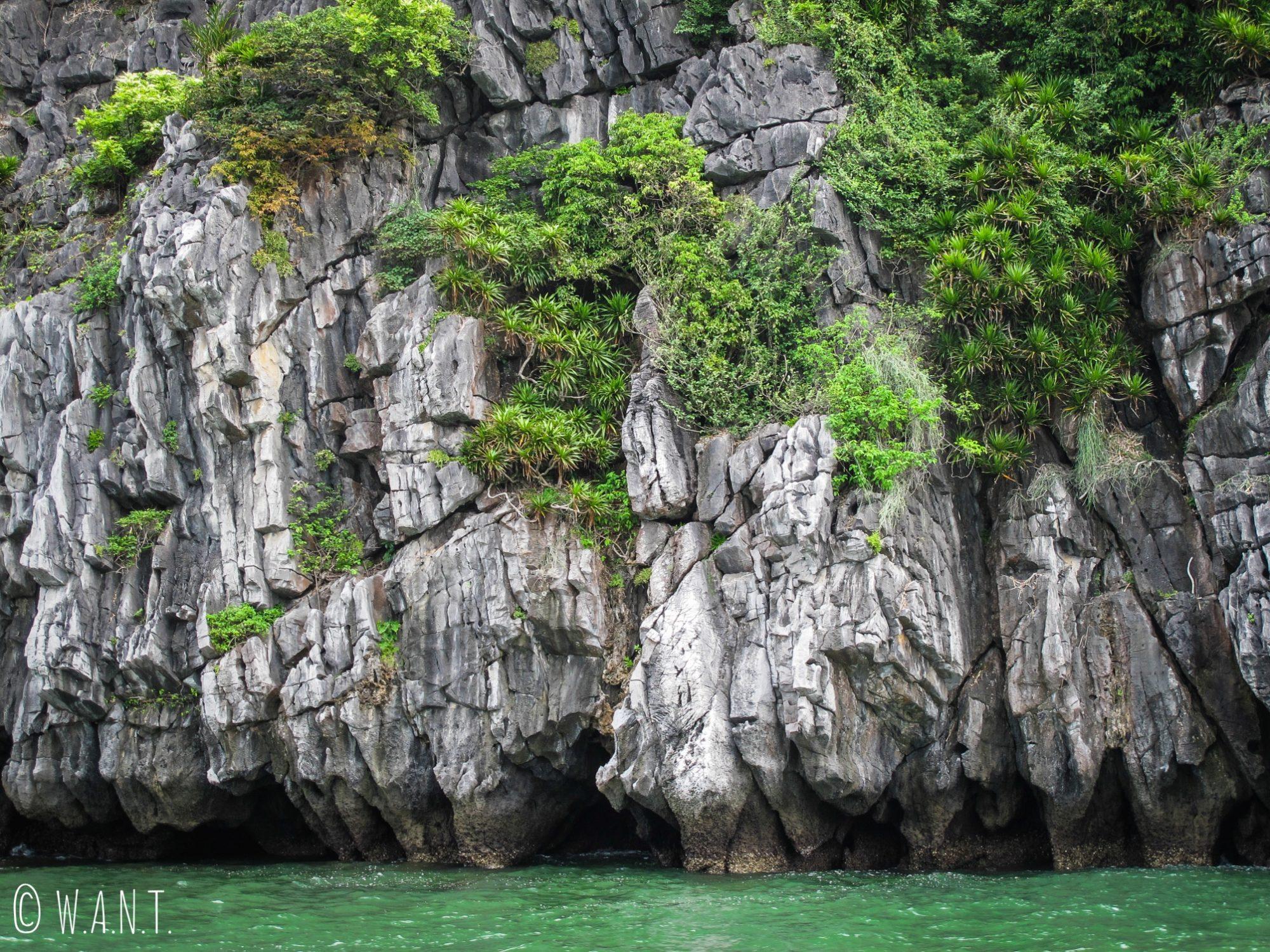 Le pic karstique rencontre l'eau de la Baie de Lan Ha