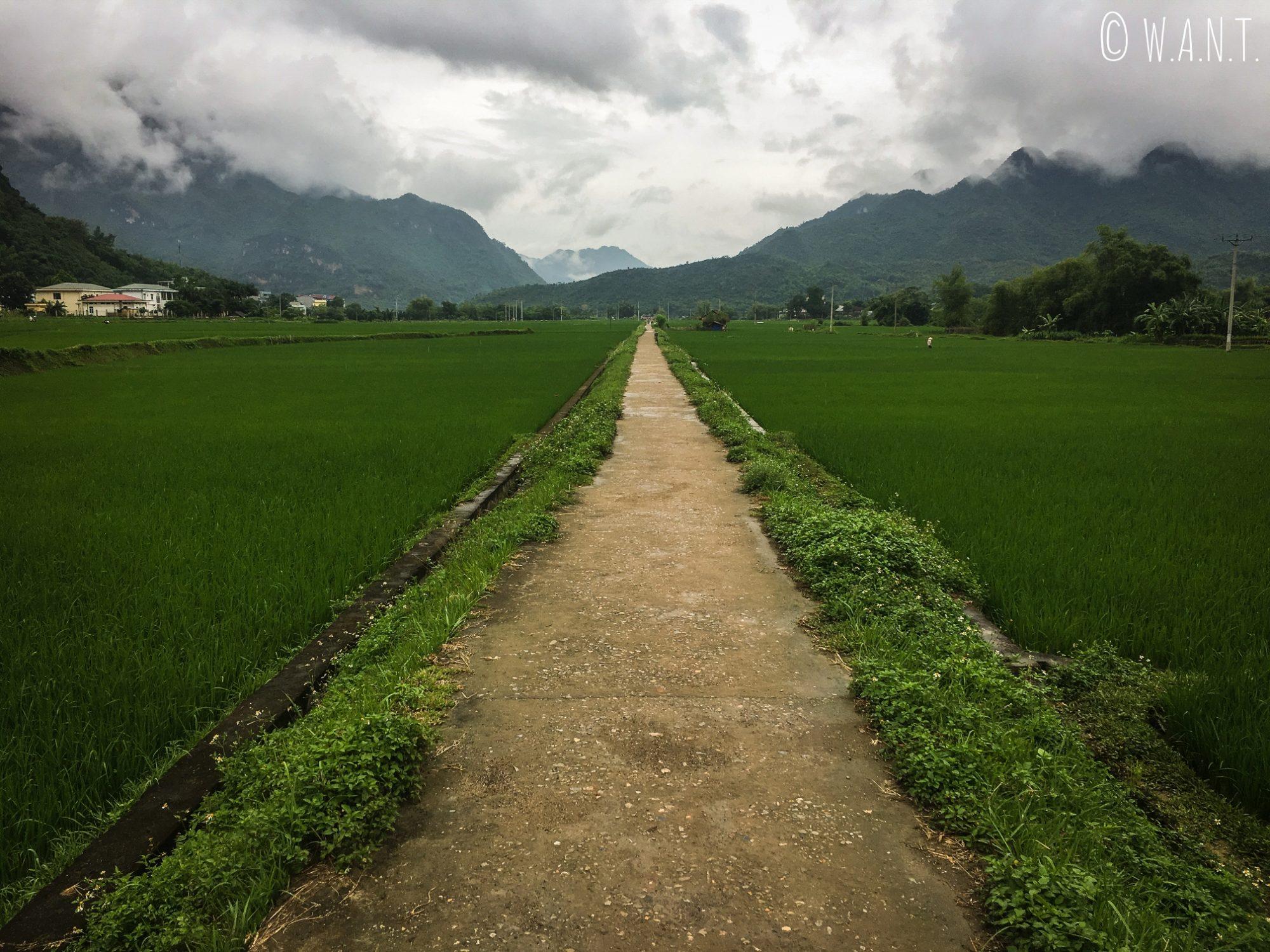 Les nuages sont comme suspendus aux sommets des montagnes de Mai Chau
