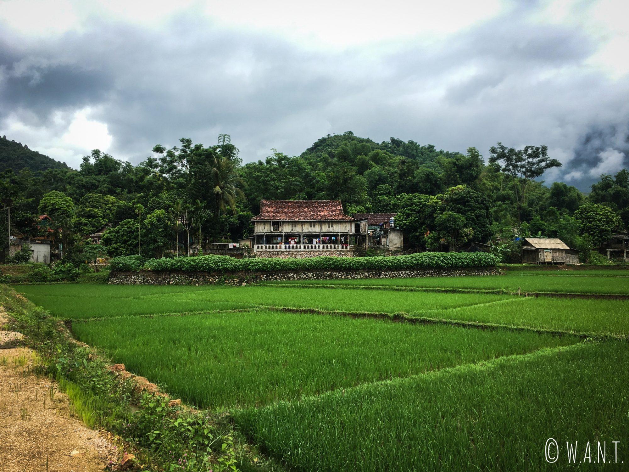 Maison sur pilotis à Mai Chau