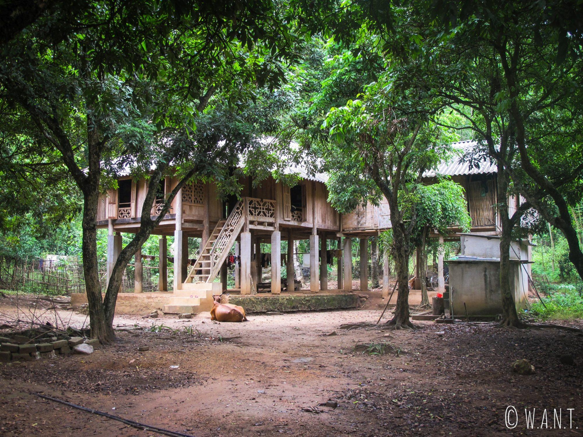 Maison sur pilotis dans les villages de Mai Chau