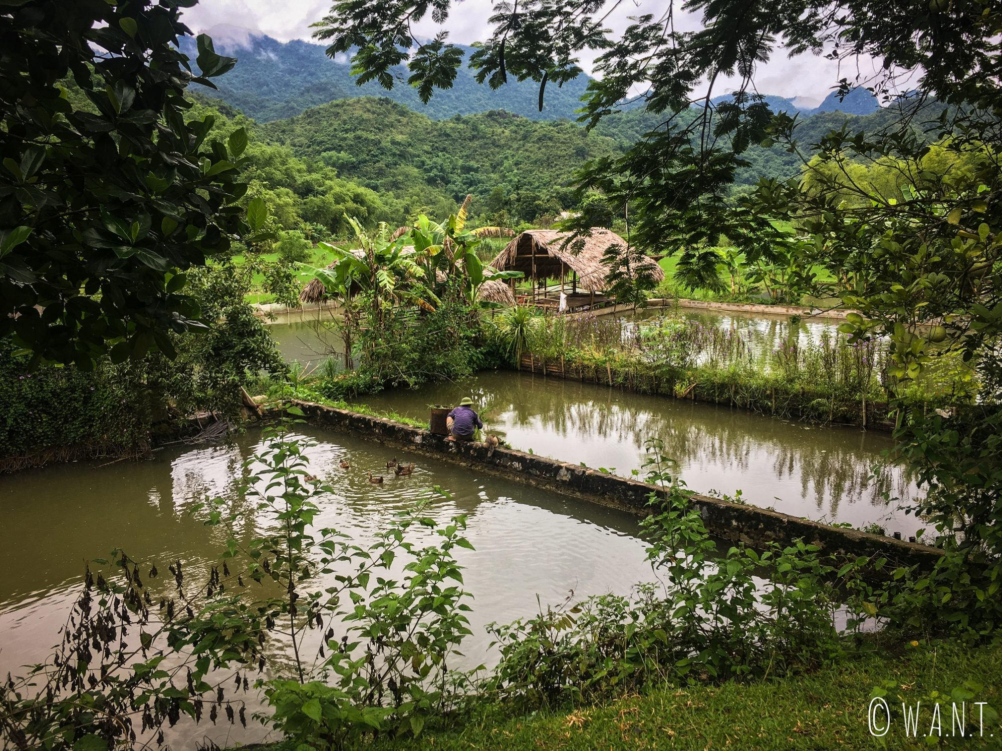 Moment de vie dans la campagne de Mai Chau