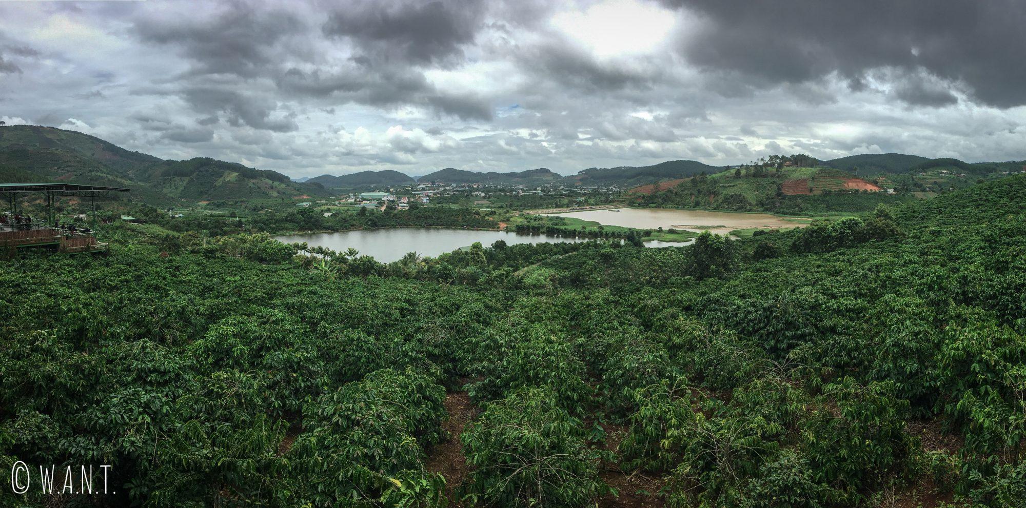 Panorama sur la plantation de café du Me Linh Coffee Garden près de Da Lat