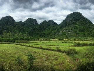 Panorama sur les pics karstiques du parc national de Phong Nha-Ke Bang