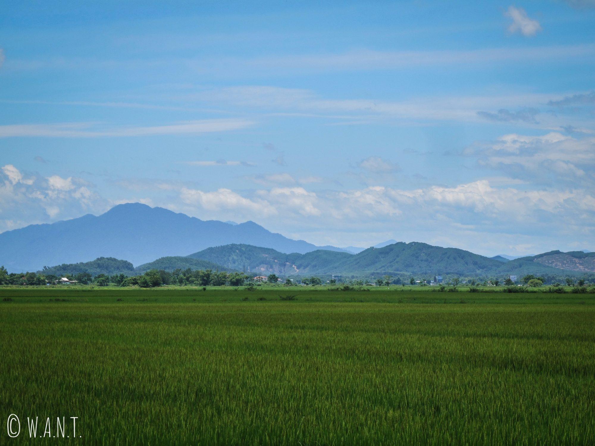 Paysage de rizières et montagnes aux environs de Hué