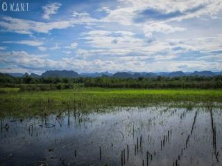 Paysage incroyable sur les pics karstiques du parc national Phong Nha-Ke Bang