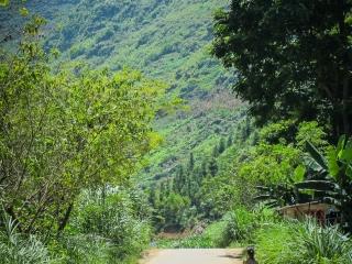 Petite fille dans le village de Nam Ban