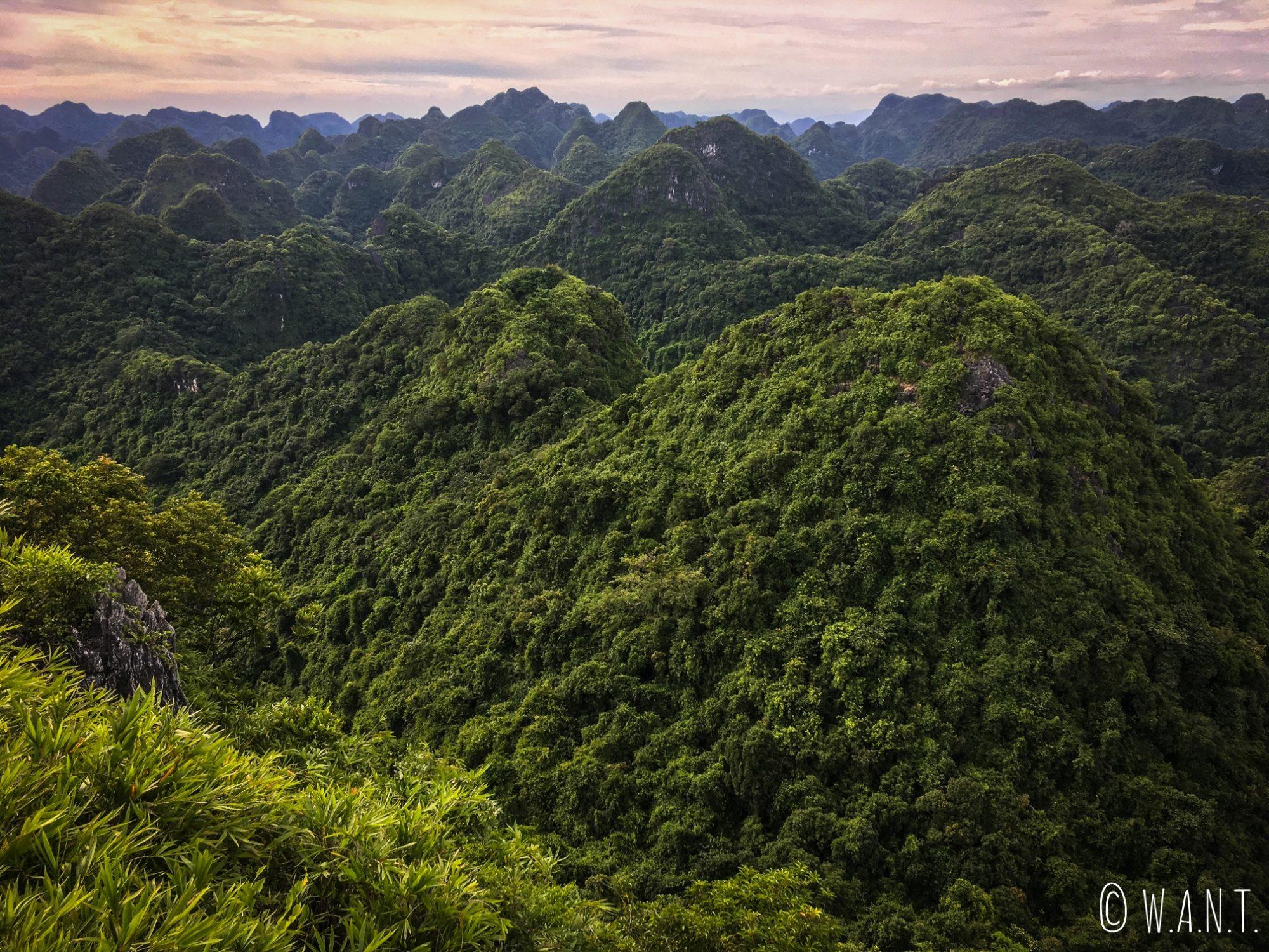 Point de vue fabuleux depuis le sommet du Ngu Lam Peak à Cat Ba