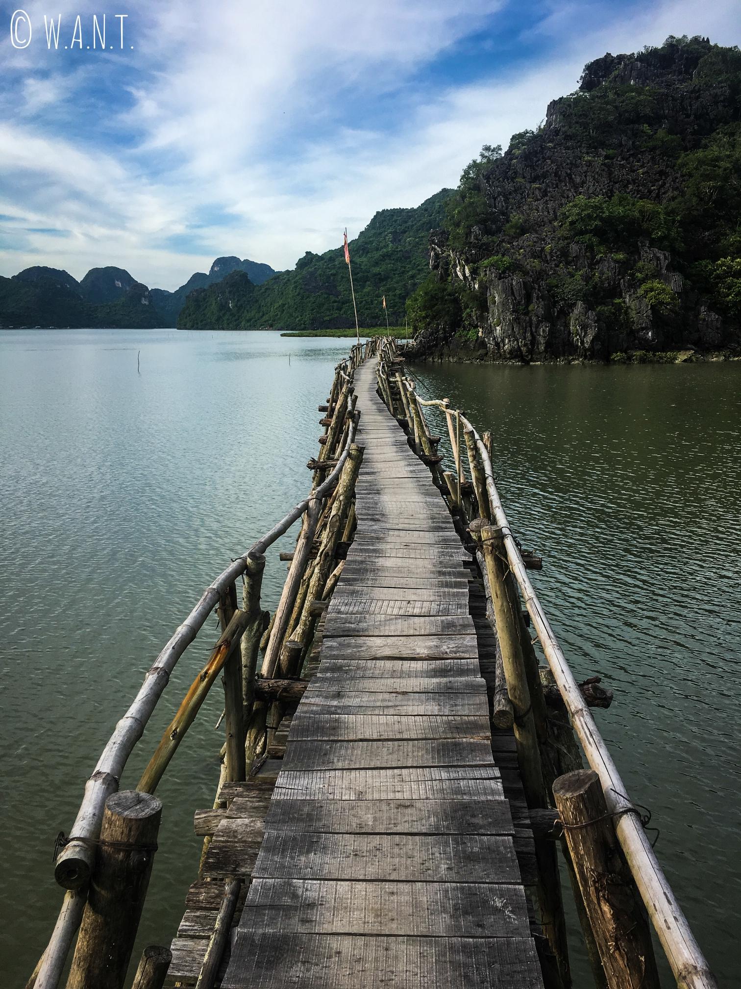 Pont en bambou sur le chemin de l'embarcadère Ben Pha Gia Luan à Cat Ba