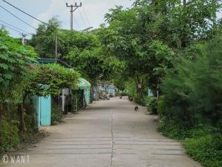 Route déserte sur l'île de Cam Kim