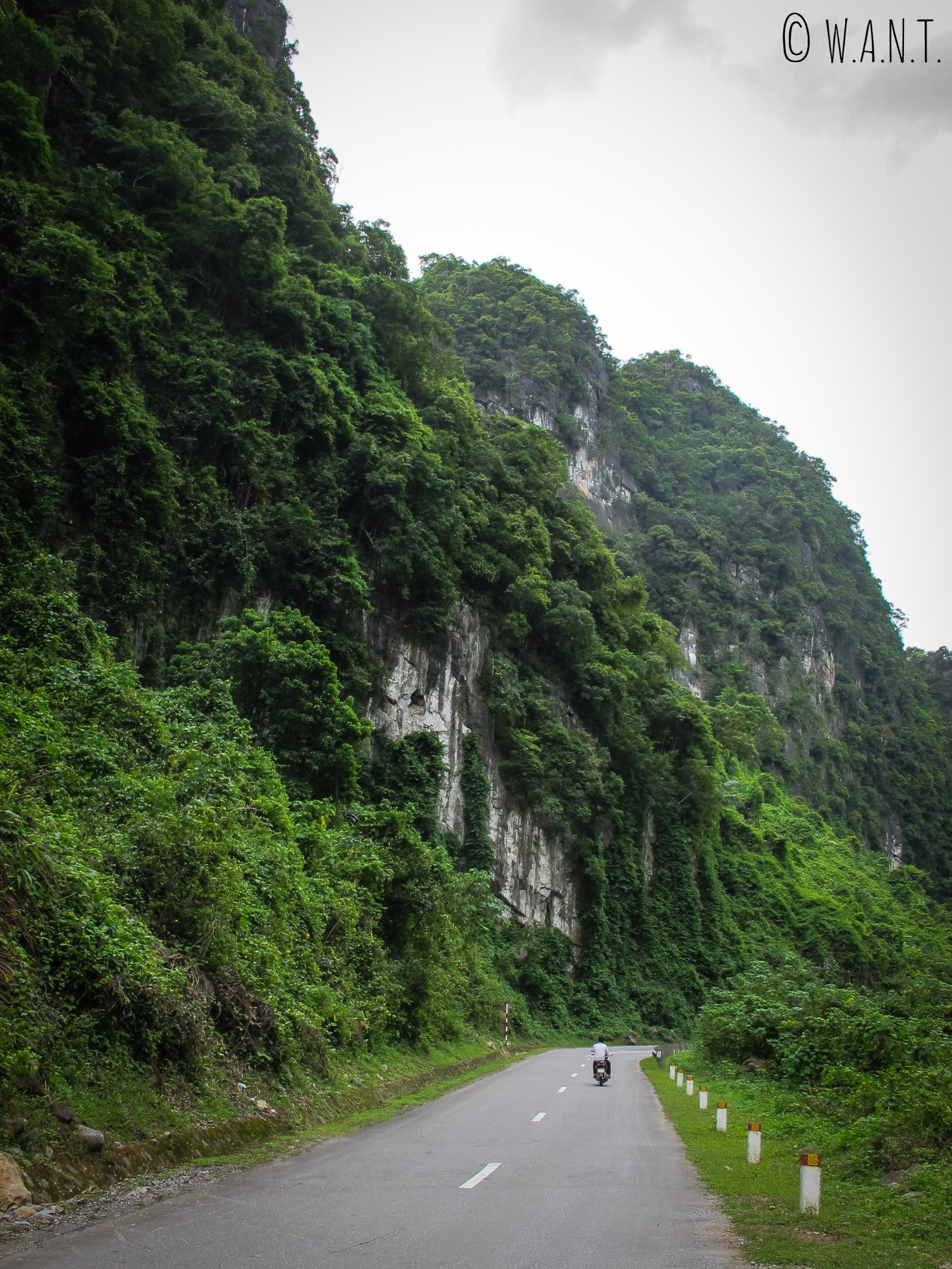 Route traversant le parc national Phong Nha-Ke Bang