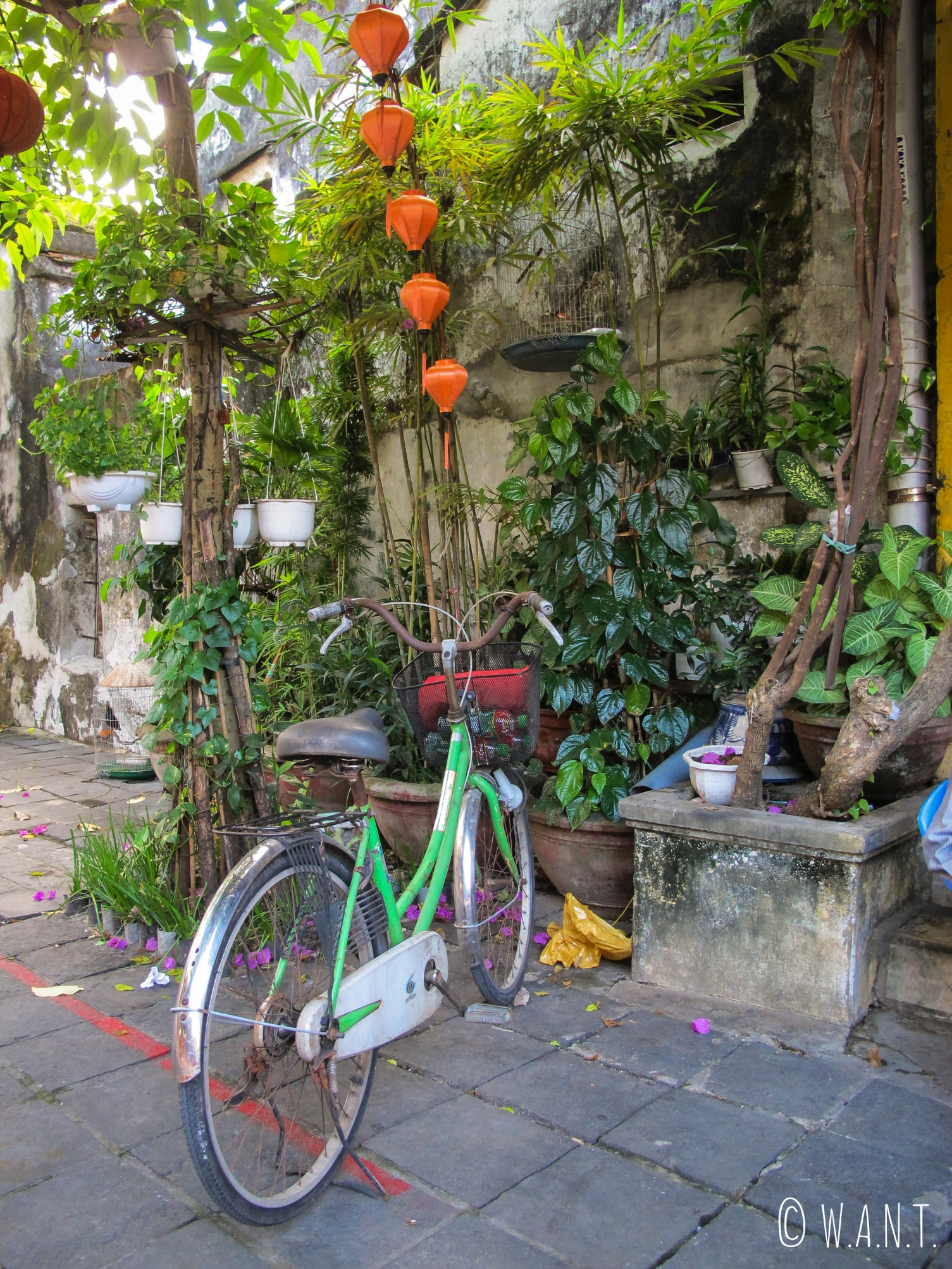 Vélo dans les rues de la vieille ville de Hoi An